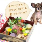 愛犬のおせちで人気の帝塚山ハウンドカム!通販で評判のはこちら♪