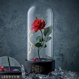 美女と野獣真実のバラ