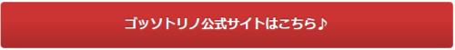 ゴッソトリノ公式サイト