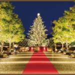 クリスマスイルミネーション東京のランキング5選!穴場スポットはここだ!